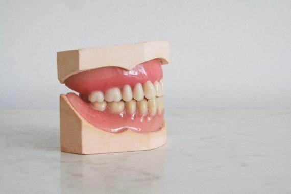tandlæge amager